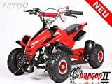 Kinderquad Dragon (Benzin 49ccm)