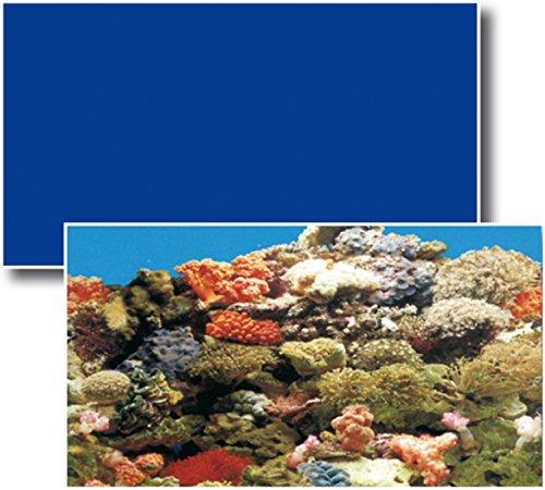 Wave Sfondo Doppio Décor de Fond pour Aquariophilie Marino/Bleu 50 cm X 15 m