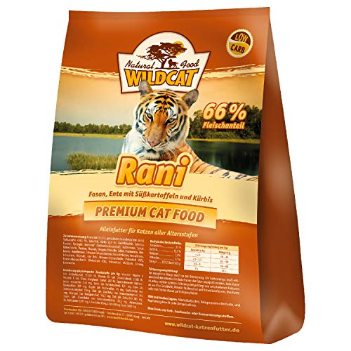 Wildcat Rani, 3 kg
