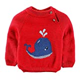 Teen Kids Toddler Baby Girls Boys Sweater Fall Winter Clothes Long Sleeve Cartoon Whale Knitted Pullover Tops (Red, 2-3 Years)