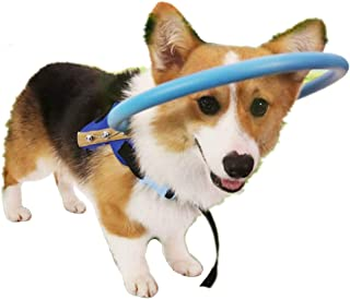 Adtop Blind Dog Harness Vest Pet Protective Vest Ring for Dogs with Blind Sick Eyes Pet Prevent Collision