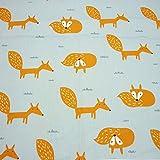 Ein Stück 50 cm * 160 cm Cartoon Fox