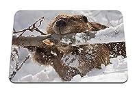 22cmx18cm マウスパッド (ビーバー支店雪をかじる) パターンカスタムの マウスパッド