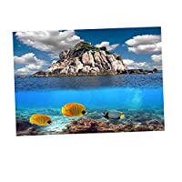 CUTICATE 魅力的な3D背景ポスター/水槽水槽の背景の装飾 - XL