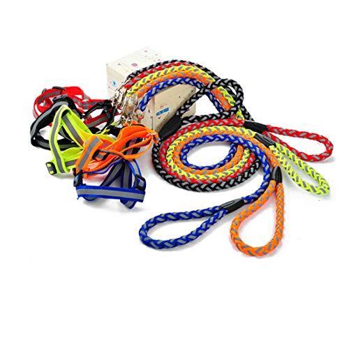 CSMZ Halsbanden en riemen for Middelgrote Honden, riemen, halsbanden, riemen, Samojeed Golden Retriever riemen, Grote Hond Pet Supplies (Color : Orange, Size : L)
