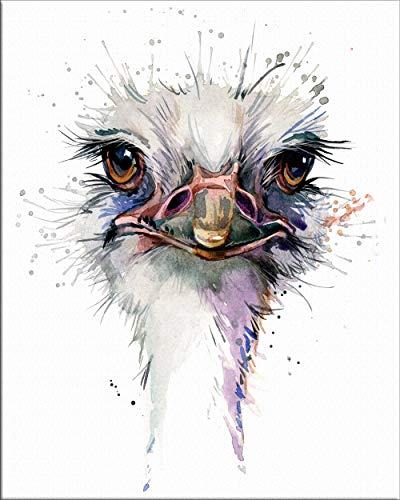 7Dots Art. Baby animals. Watercolor Art Print, poster 8'x10' on Fine Art thick Watercolor paper for childrens kids room, bedroom, bathroom. Wall art decor with Animals for boys, girls. (Ostrich)
