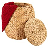 Best Choice Products Vintage Multipurpose Hyacinth Storage Basket, Plant Décor, Handwoven Organizer Tote for Bedroom, Living Room, Bathroom, w/Lid - Natural