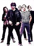bribase shop Music Band Group Photography Strokes Julian Casablancas 17x13'' Poster Art Print LV10306