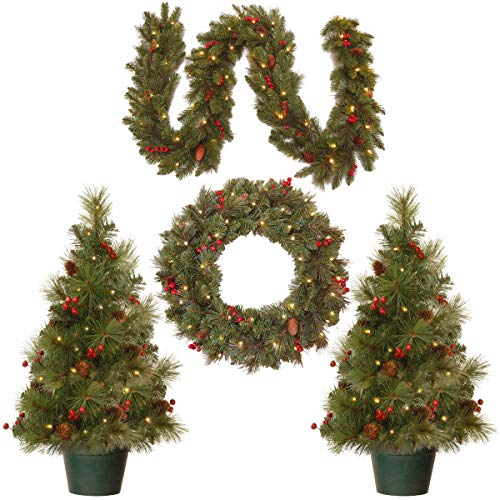 National Tree Holiday Decorating Assortment with 2 3 Foot Entrance Trees, 1 9 Foot by 8 Inch Garland and 1 24 Inch Wreath all with Warm White Battery Operated LED Lights (ED7-PRO-ASST) (Renewed)