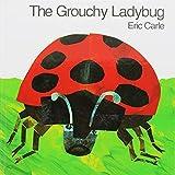 The Grochy Ladybug