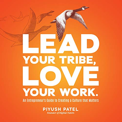 Lead Your Tribe, Love Your Work audiobook cover art