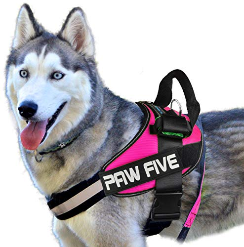 """Paw Five CORE-1 Dog Harness, Reflective No-Pull with Built-in Waste Bag Dispenser, Fully Adjustable with Padded Control Handle for Medium and Large Dogs, (Large (Girth: 32"""" - 39""""), Diamond Pink)"""