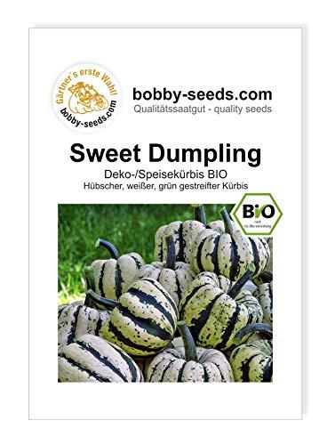 Sweet Dumpling Bio Kürbissamen von Bobby-Seeds Portion