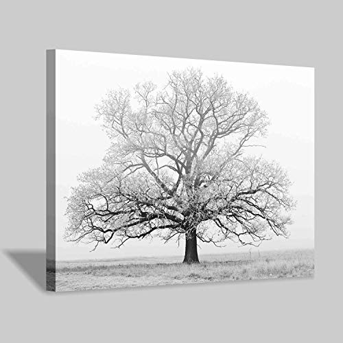 Hardy Gallery Winter Tree Canvas Print Artwork: Black & White Landscape Painting Wall Art