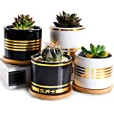 Sun-E Succulent Planter,Plants Pot,Cactus Pots,3.15 Inch Mini White/Black Ceramic Flower Planter Pot Golden Line with Bamboo Tray with Drainage Easy Matching Gift Packaging 4 in Set (Black2,White2)