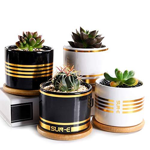 SUN-E Sukkulenten-Übertopf, Pflanzentopf, Kaktus-Übertöpfe, 8 cm Mini Keramik-Übertopf Golden Line mit Bambus-Tablett und Drainage Einfach passende Geschenkverpackung 4 im Set (Schwarz*2, Weiß*2)