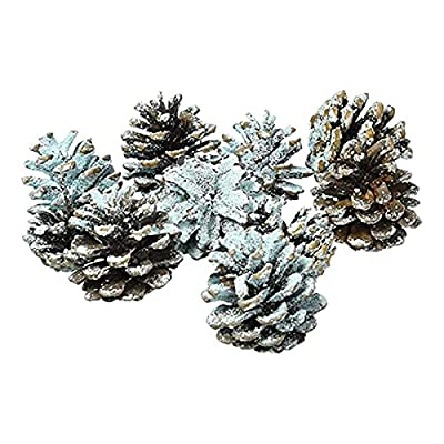 Melodyblue 80Pcs Burning Fireplace Pine Cones Wood Burning Accessories, Fireplace, Campfire, Fire Pit and Green Colored from Melodyblue