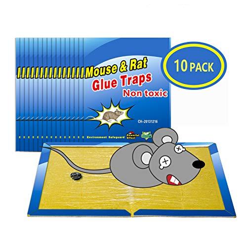 Piège à Souris Pièges à Rats, 10 Plaques Collantes Souris, Plaques de glu Anti Souris Anti Rat - Grande Taille 8'x12'