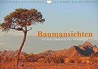 Baumansichten - Afrikas markante Erscheinungen (Wandkalender 2022 DIN A4 quer): Bemerkenswerte Baumgestalten entdeckt auf einer Reise durch Namibia und Botswana (Monatskalender, 14 Seiten )