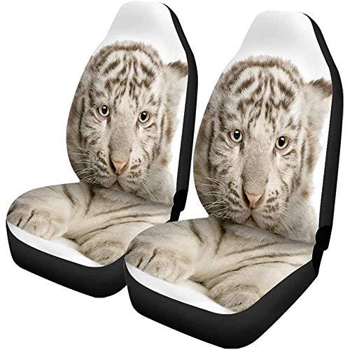 Fall Ing Autostoelbekleding, grijs, baby, wit, tijger, kub, maand naar vooraan, universele autostoelbeschermer