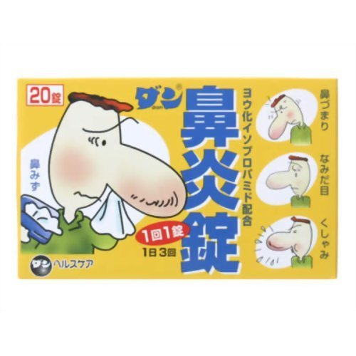 【指定第2類医薬品】ダン鼻炎錠 20錠