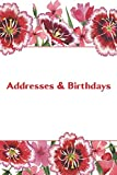 Addresses & Birthdays: Watercolor Red Carnations