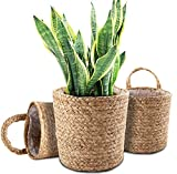 Yesland 3 Pcs Seagrass Storage Baskets with Plastic Liner, 11 x 8.5 Inches Wall Hanging Woven...