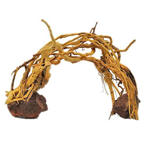 DALEI Decor-Wurzel Wurzel Holz Aquarium Terrarium Deko Moorkienwurzel bepflanzter Garnelenbaum Schiefer Moorkienwurzeln,L