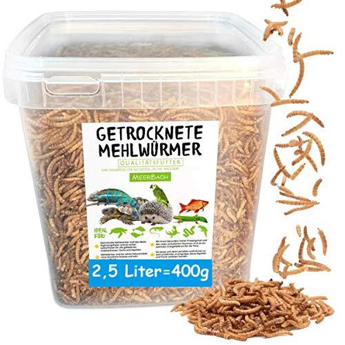 Mehlwürmer getrocknet • 2,5 Liter Premium Futter im Eimer • der proteinreiche Snack für Wildvögel, Fische, Reptilien, Schildkröten und Igel