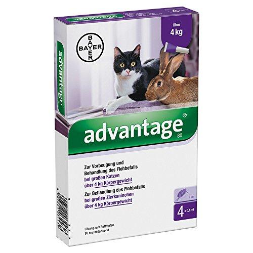 ADVANTAGE SPOT ON 80 per gatti e conigli oltre 4 kg