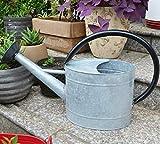 HORTICAN Watering Can