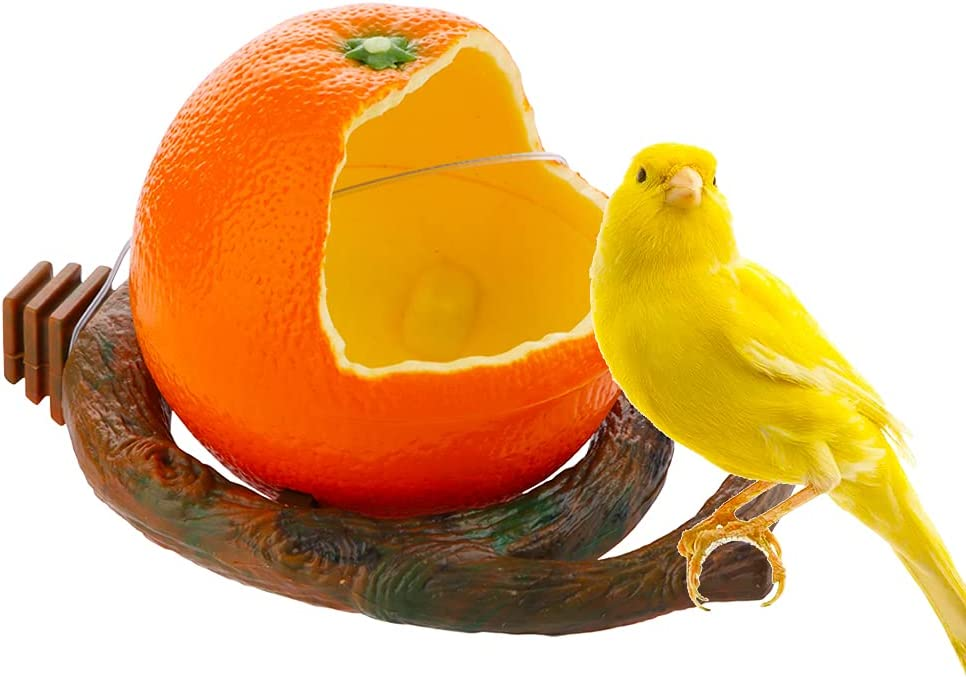 Bird Feeder Fruit Ranking TOP20 Shape with Holder Bombing new work Water Food Clamp Cage-Pet