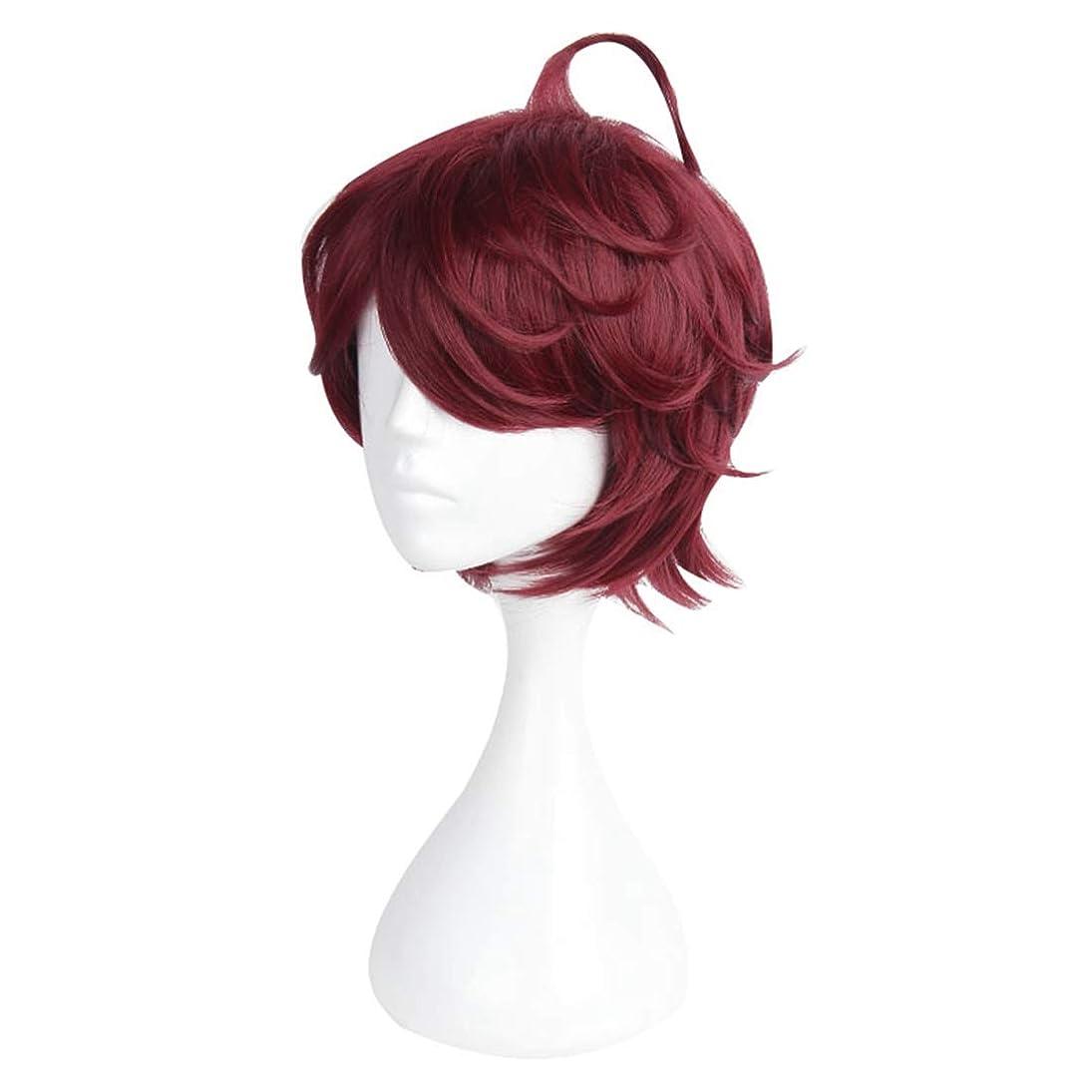 Koloeplf 音楽ハンドゲームロールウィッグコスプレ衣装ウィッグメンズダークレッドショートヘアウィッグ (Color : Dark red)