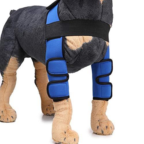 Rack 2 rodilleras para mascotas Leggins cirugía lesiones, funda protectora segura contra arañazos y vibraciones