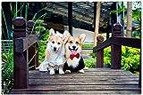 YGYGYG Puzzle para Adultos 1000 Piezas Interesante 2 Perros Corgi Pintura Art Deco para el hogar 38x26cm