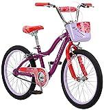 Schwinn Girls' Elm Bicycle, Purple, 20-inch Wheels