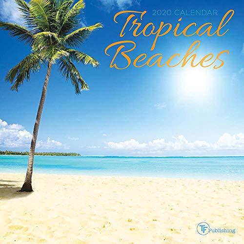 2020 Tropical Beaches Mini Calendar