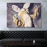 XMYC Pop artHappy Rabbit Animal Cute Modular Modern Poster Prints Picture Living Office Wall Decor40x60cm sin Marco