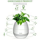 Pot de fleurs original Bluetooth tactile Voumey -...