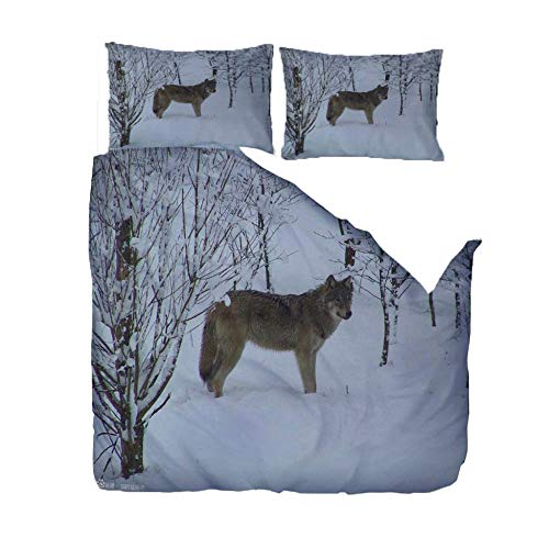 IJBSDJI Duvet Cover Double Wolf In The Snow,Easy Care Anti-Allergic Soft & Smooth Printed Duvet Set With Zipper Closure,Machine Washable