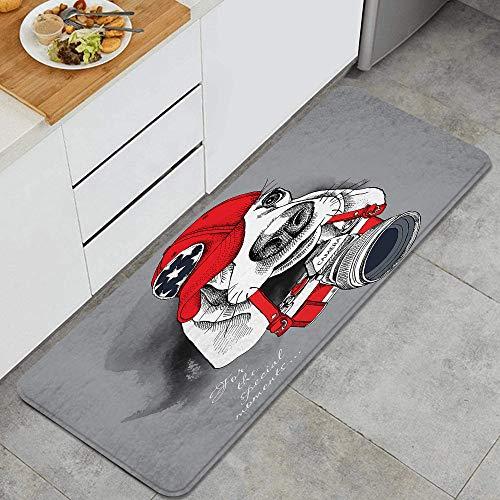 Marutuki Anti-Fatigue La Cuisine Tapis,Portrait d'un Chien Basset Hound en Bonnet Rouge avec Appareil Photo sur Gris,Antidérapant Coussiné Porte Chamb