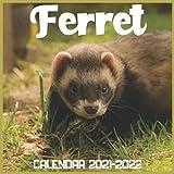 Ferret Calendar 2021-2022: April 2021 Through December 2022 Square Photo Book Monthly Planner Ferret, small calendar