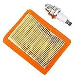 Kit de servicio Filtro de aire Bujías Se adapta a FS120 FS200 y FS250 Desbrozadora Accesorios de piezas de repuesto