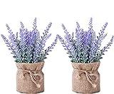 YAPASPT Artificiel Lavande Fleurs - 2 pcs Faux Plante Toile de jute en pot pour Accueil Intérieur De plein air Mariage Lieu Décor (Violet)