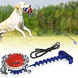 Juguete para perros con ventosa, juguete inteligente para masticar, juguete para perros, duradero, cepillo de dientes multifunción, juguete pedagógico para mascotas