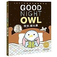 绘本花园:晚安,猫头鹰(平)