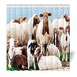 YISUMEI Motiv Duschvorhang 180x180 Schaf Herde Antischimmel Waschbar Textil mit Duschvorhangringen