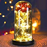 HXS Beauty and The Beast Rose Enchanted Rose Glass Rose with LED Lights in Glass Dome Rose Lamp for Christmas Holiday Party Anniversary Valentine's Party Gifts, Wedding Gifts