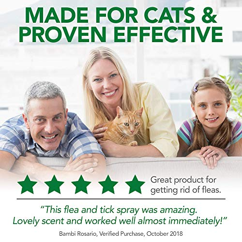 Vet's Best Flea & Tick Home Spray for Cats   Flea Treatment for Cats & Home   Flea Killer with Certified Natural Oils   32 oz