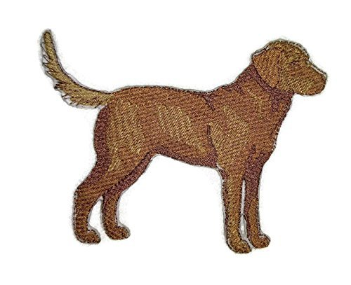 Amazing Custom Dog Portraits [Chesapeake Bay Retriever] Embroidery Iron On/Sew patch [5' x 3.9'][Made in USA]